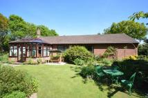 Detached Bungalow for sale in Heath Road, Ridlington...