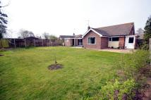 Litester Close Detached Bungalow for sale