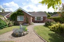3 bed Detached Bungalow for sale in Bradfield Close...