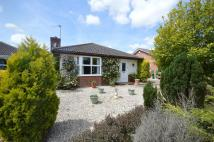 3 bed Detached Bungalow in Sampson Road...