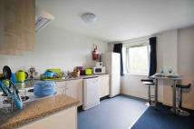 property to rent in The Pavilions Student Village, Ruston Way,
