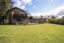Detached house for sale in Helmshore Road...