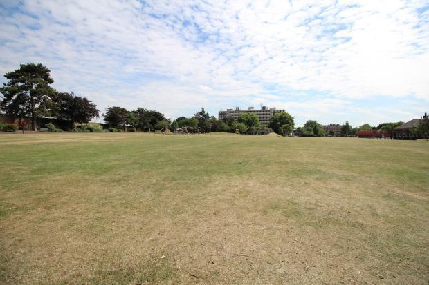 Local park view