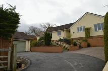 4 bedroom Detached Bungalow for sale in Sparrow Hill Way, Weare...