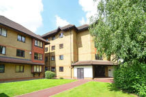 Flat in Orchard Grove, Anerley