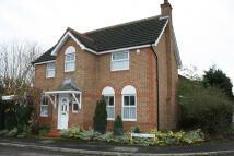 Detached house in ledran close, Wokingham