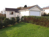 Detached property for sale in Pastoral Way...