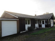 4 bed Detached Bungalow in Church Lane, Holybourne