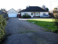 Detached Bungalow for sale in Old Norwich Road, Ipswich