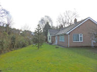 Detached Bungalow for sale in Halkyn road...