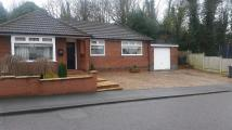 Bungalow to rent in Windmill Road, Nuneaton...