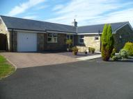 Bungalow for sale in The Willows, Red Row...