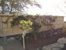 1 bedroom Ground Flat for sale in Las Chafiras, Tenerife...