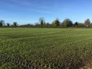 property for sale in Cabinhill, Ratoath, Co. Meath - c.19.5 acres
