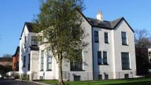 1 bedroom Flat in Conyngham Road Victoria...