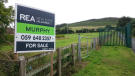 property for sale in Sruhaun , Baltinglass, Wicklow