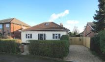 Chesterfield Drive Detached Bungalow for sale
