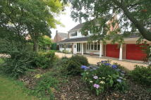 3 bed Detached property for sale in The Ridings, Bulcote...