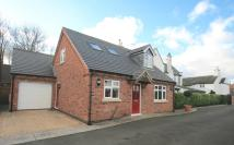 2 bed Detached Bungalow in The Anchorage...