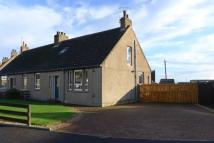 Semi-Detached Bungalow in 2 Braehead Road...