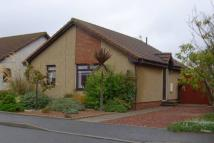 2 bed Detached Bungalow for sale in 31 Windmill Court...