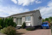 2 bed Semi-Detached Bungalow in 5 Hayston Park, Balmullo...