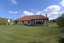 Detached Bungalow in 23 Comerton Place...