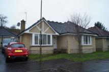Bungalow for sale in 33 Castle Drive, Airth...