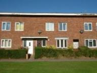 4 bed Terraced house to rent in Primrose Close, Hatfield...