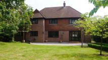 5 bed Detached house in Ladylands...
