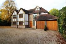 Detached house in Hutton Lodge...