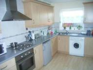 3 bed semi detached property to rent in Torridon Close...