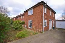 3 bedroom semi detached home to rent in Berners Drive, ST ALBANS...