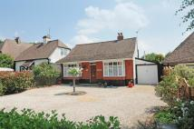 Detached Bungalow for sale in Salthill Road, Fishbourne