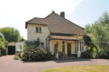 4 bed Detached house for sale in Chichester