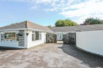 Semi-Detached Bungalow in Selsey