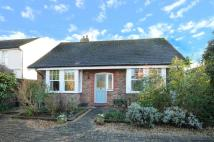 Detached Bungalow for sale in Selsey Road, Sidlesham