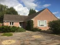 Detached Bungalow to rent in Willow Drive, SP4