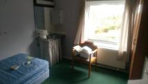 House Share in Penn Grove, Norwich, NR3