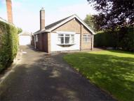 Detached Bungalow for sale in Laceyfields Road, HEANOR...