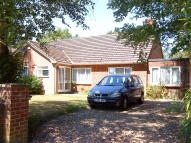 3 bedroom Detached Bungalow to rent in Sandy Lane, St. Ives...