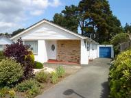 Detached Bungalow in Sarum Avenue, West Moors...