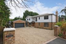 Graftonville London Road Detached house for sale