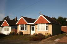 Detached Bungalow in The Dale...