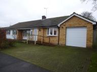 Bungalow to rent in Rozelle Close, Littleton...
