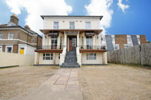 12 bed house in Ealing