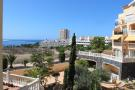 Studio apartment in Los Cristianos, Tenerife...