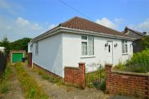 Detached Bungalow for sale in Centre Drive, Newmarket...