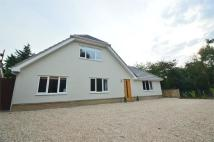 Detached Bungalow to rent in Windmill Hill,, Exning...
