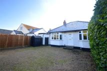 Detached Bungalow in Ashley Road, Newmarket...